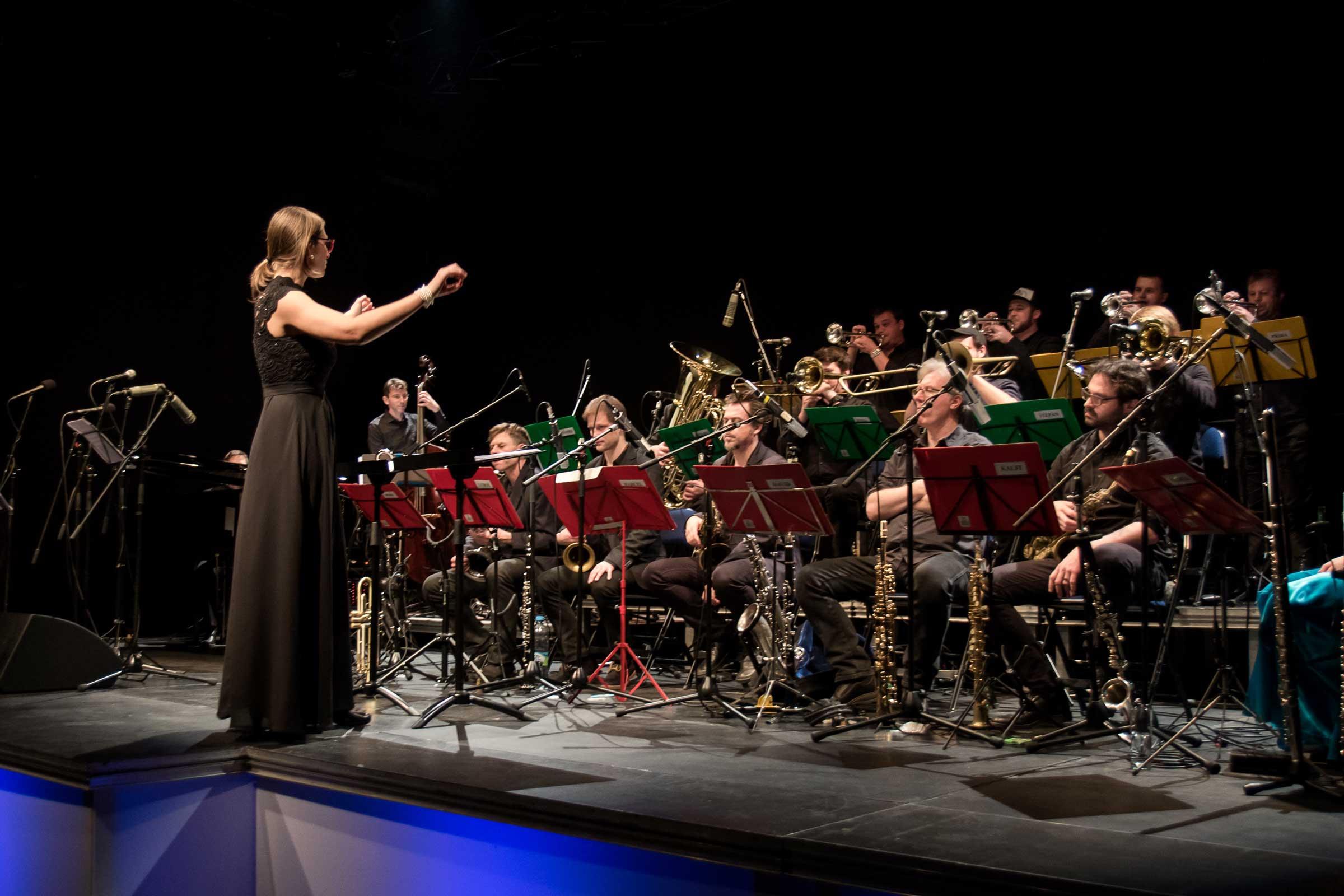 Vánoce s Concept Art Orchestra, diriguje Štěpánka Balcarová, foto Jan Tichý